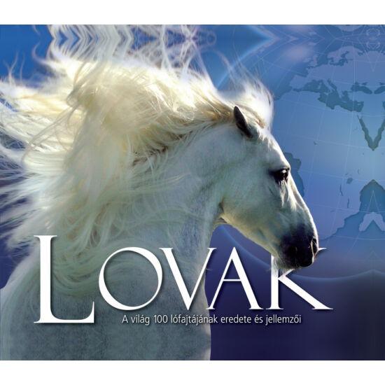 Lovak - A világ 100 lófajtájának eredete és jellemzői
